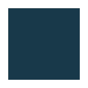 osmc icon