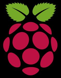 Raspberry pi icon