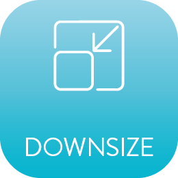 downsize icon